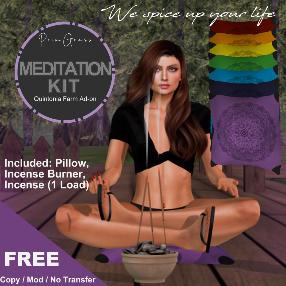 Meditation Kit with incense burner and meditation pillow in several colors. Add-on for the Quintonia Farming System available here: primgrass.world:8002:Rebel Dream Estate